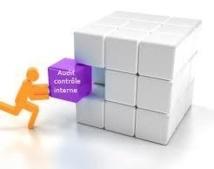 www.Ipaudit.com